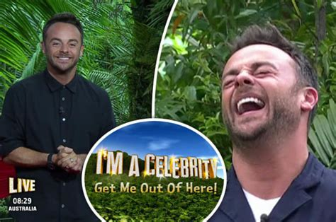 Im Celibate Get Me Out Of Here by I M A 2017 Jungle Saved Ant Mcpartlin As