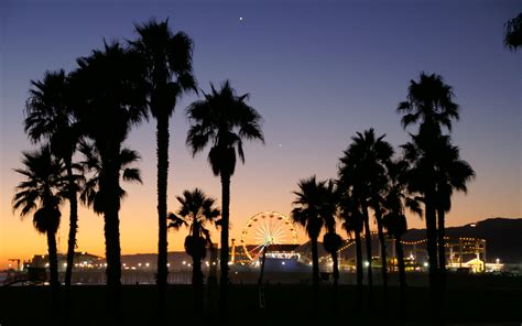 wallpaper california tumblr california palm trees sunset tumblr wallpaper