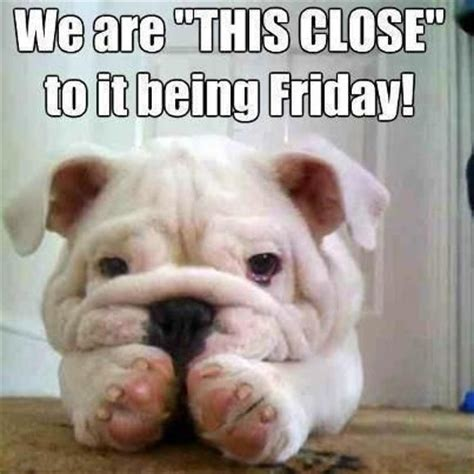 Friday Memes Tumblr - we are this close to it being friday pictures photos