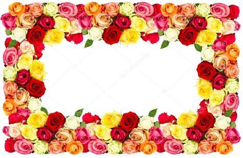 foto di fiori colorati cornice di fiori colorati foto stock 169 liligraphie