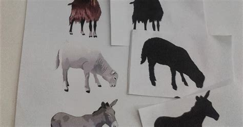 boyama resim no 30 ciftlik hayvanlari boyama gosterim 307 ali denizin tarihine d 220 ş 220 len notlar g 246 lgesini bulma