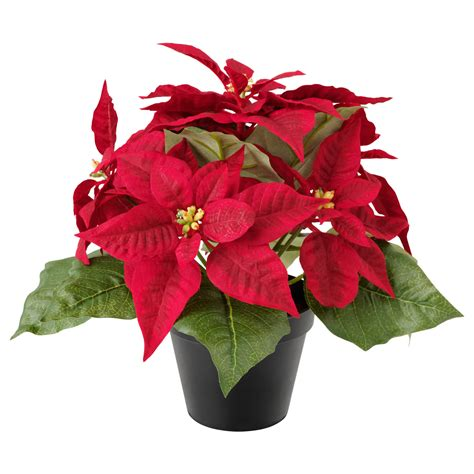 fejka artificial potted plant poinsettia red 12 cm ikea
