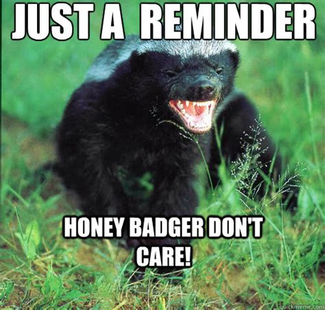 Badger Memes - honey badger memes 28 images honey badger says hoppy
