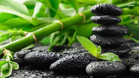 meditation reiki zen soulagement du stress musique de