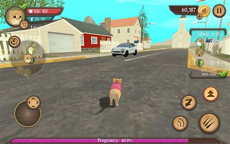 Play Store Like Sims Cat Sim Play With Cats Android Apps On Play