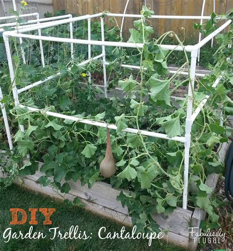 build a garden trellis diy garden trellis part 2