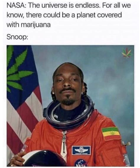 Pot Memes - 50 hilarious weed memes that will keep you laughing for hours