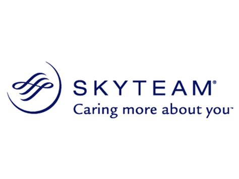 skyteam logo downloads