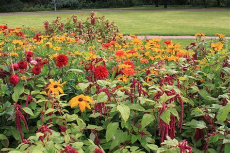 britzer garten eingang mohriner allee berlin saisonbepflanzungen in der mohriner allee b 252 ro christian