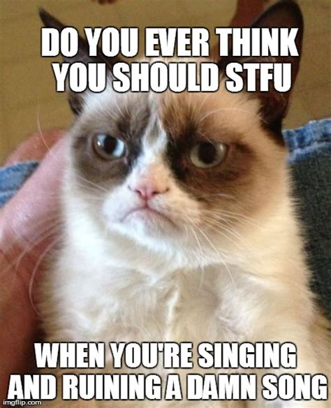cat songs songs to sing to your cat and other feline favourites books grumpy cat meme imgflip