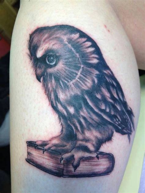 tattoo owl books 15 best images about owl books tattoos on pinterest