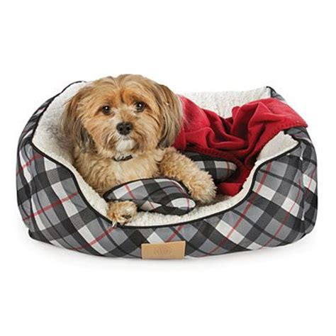 big lots dog beds 23 best images about biglots on pinterest wall mount