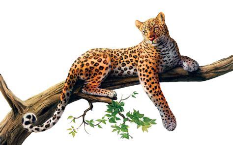Giraffe Photo Frame Random Color jaguar png stock 3 3 3 by gilgamesh on deviantart
