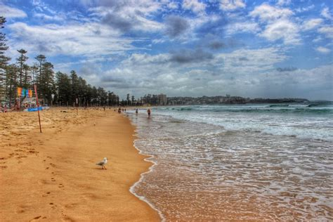 sydney ferries manly northern beaches australia 5 reasons why sydney s manly beach is worth the ferry trip