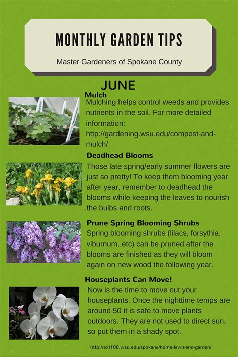 garden tips monthly gardening tips spokane county washington state