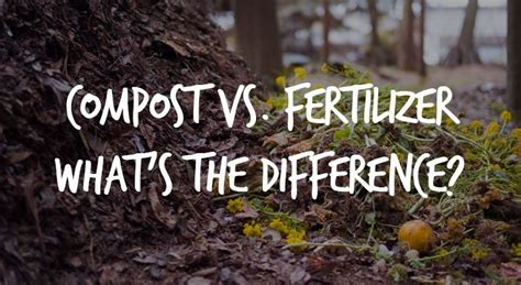 compost  fertilizers whats  difference epic