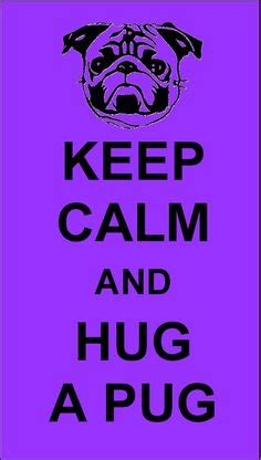 national hug a pug day 1000 images about pet memes on pet memes years and monday
