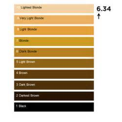hair color number chart hair colour numbering system l or 233 al professionnel