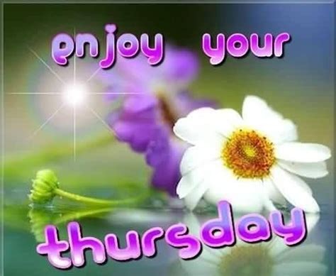 enjoy  thursday pictures   images