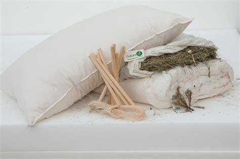 cuscini bio cuscino in cotone bio e fieno alpino bio