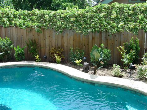 pool landscaping pictures exterior pictures of 5419 miller ave dallas tx a