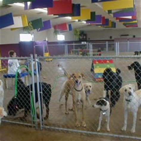 boarding springfield mo happy tails doggie daycare boarding springfield mo yelp