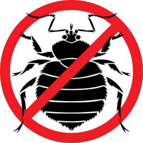 does dry cleaning kill bed bugs using steam to kill germs and bed bugs just venting