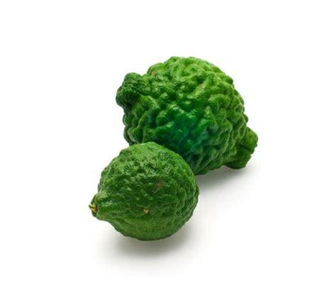 eats lime eat this word kaffir lime beard foundation