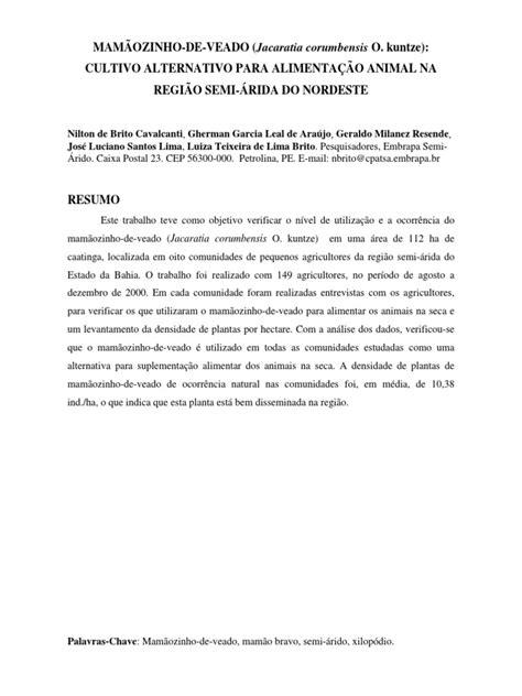 MAMÃOZINHO-DE-VEADO (Jacaratia corumbensis O. kuntze