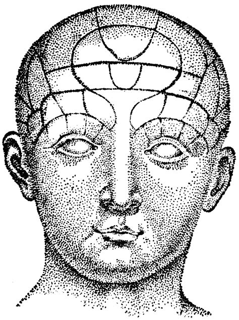 Human Head | ClipArt ETC