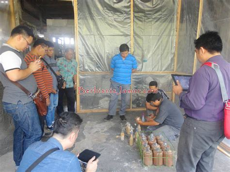 Agen Bibit Jamur Tiram pelatihan membuat bibit jamur media 41082 bisnisukm