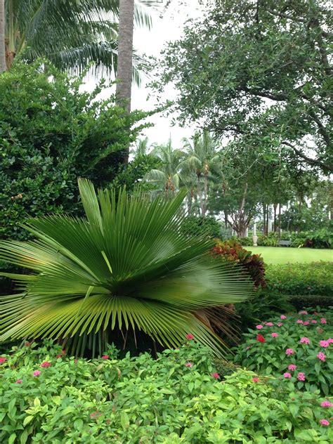 palm botanical gardens talentneeds
