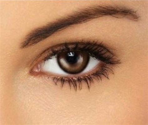 natural makeup tutorial for dark brown eyes perfect natural makeup for brown eyes fashion