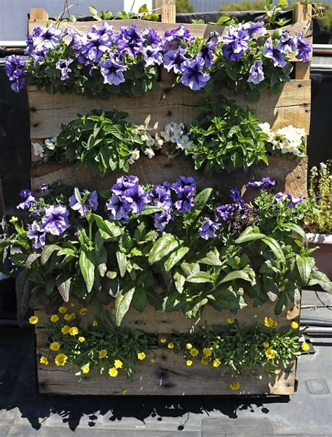 Vertical Flower Garden Maximize Space With Diy Vertical Gardens Sfgate