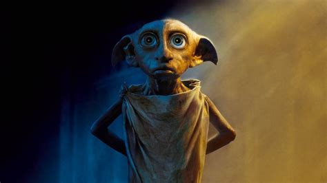 imagenes hd harry potter warner bros dobby harry potter fondos de pantalla hd