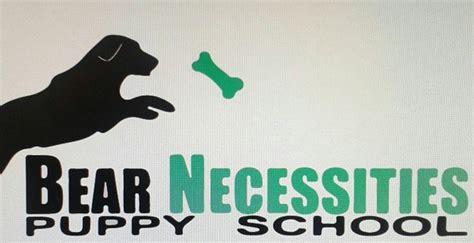puppy necessities necessities puppy school pethealthcare co zabear necessities puppy