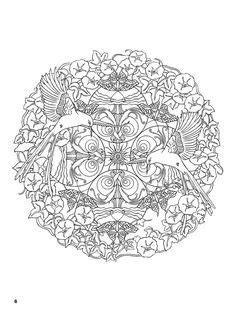 nature mandalas coloring book marty noble pretty blue roses with pink purple butterflies dl on
