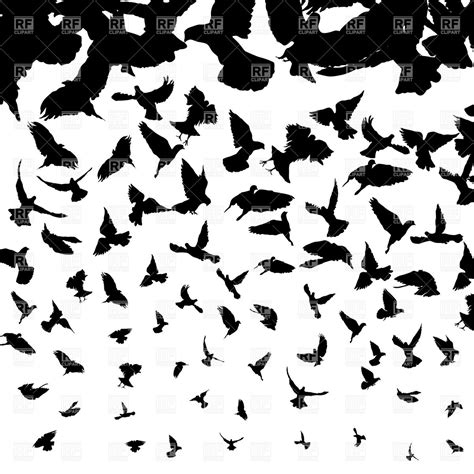 black and white bird pattern background with flying birds silhouettes royalty free