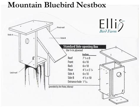 bluebird bird house plans bluebird house dimensions