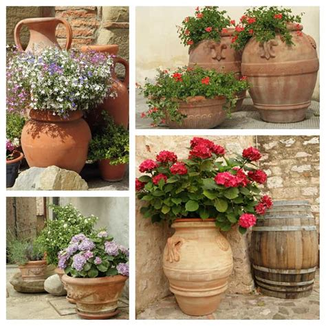 ceramic planters backyard garden lover