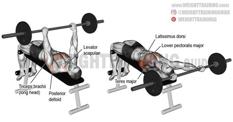 decline bench pullover decline barbell pullover exercise guide and video weight
