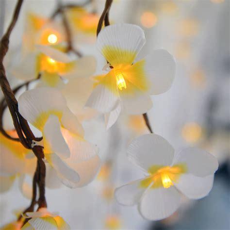 Tropical Frangipani Flower Light Chain By Home Glory Frangipani Lights