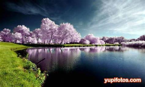 imagenes bonitas de paisajes naturales reales paisajes hermosos yupifotos