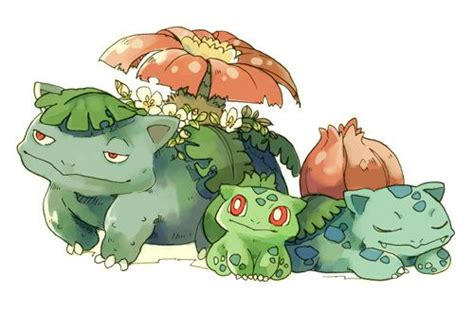 Kaos Go Bulbasaur Ivysaur Venusaur 78 images about bulbasaur on