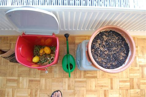 compost indoors learn  indoor composting