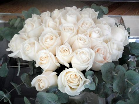 imagenes flores blancas imagen de rosas blancas myideasbedroom com