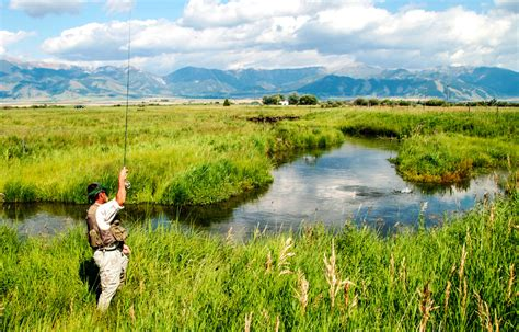 yellow fly fishing bozeman mt fly 4k wallpapers