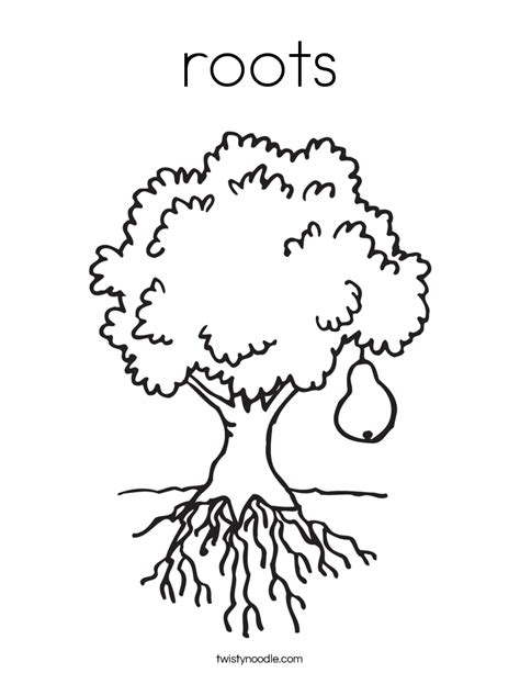 roots template plant with roots coloring page coloring pages