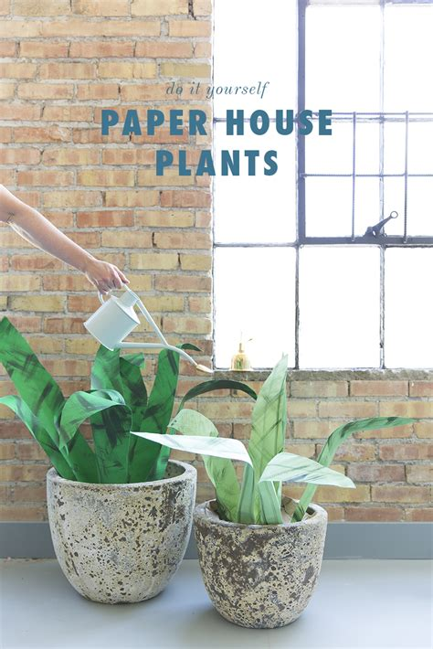 Paper From Plants - diy large paper house plants