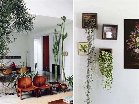 Paket Pot N Hanging For Window N Stand 3 In 1 diy home indoor plants6 collated by geneva vanderzeil a